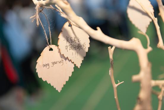 生涯成长树.png