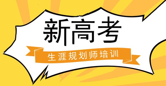 新高考生涯规划师培训.png