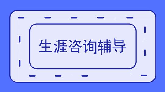 生涯规划咨询辅导.png