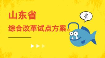 山东省深化高等学校考试招生综合改革试点方案-51选校生涯规划教育平台