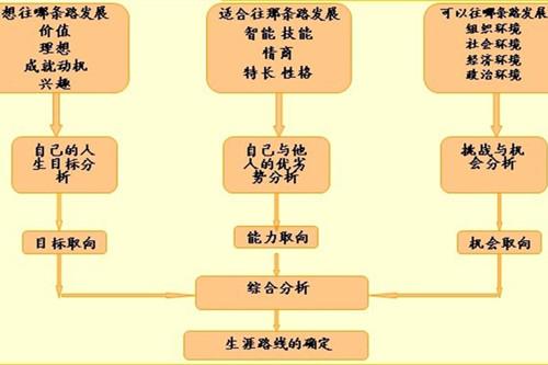 国外中学生职业生涯规划教育情况概览