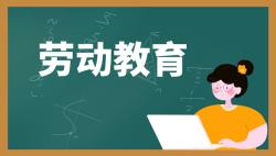 学校如何开展劳动教育课程