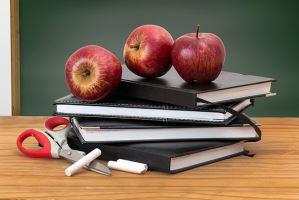 中学生涯规划教育必须尽快落地——51选校生涯规划教育平台